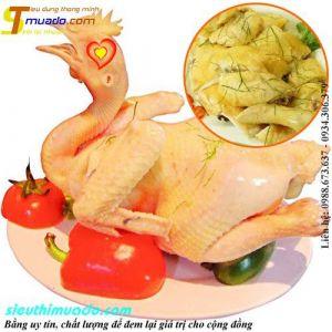 Thịt gà ta sạch ăn thóc, chạy bộ